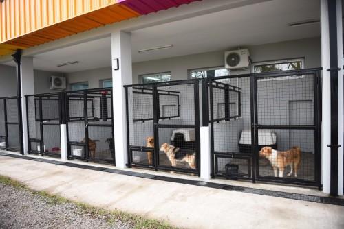 Modernas instalaciones en calle Mérmoz.